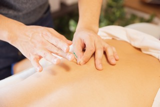 Cultivating Success With Holistic Therapy
